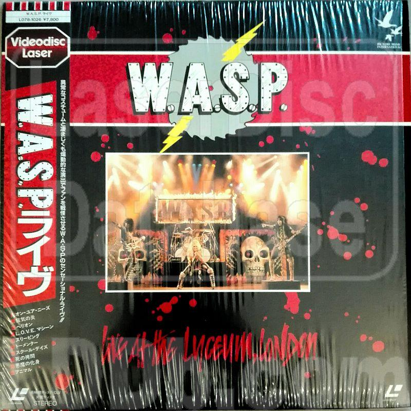 wasp live at the lyceum